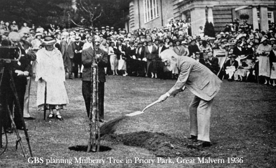 SHAW PLANTING IN 1936